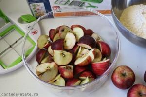 Tarta rustica cu mere (3)