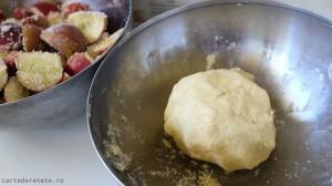 tarta rustica cu mere (5)